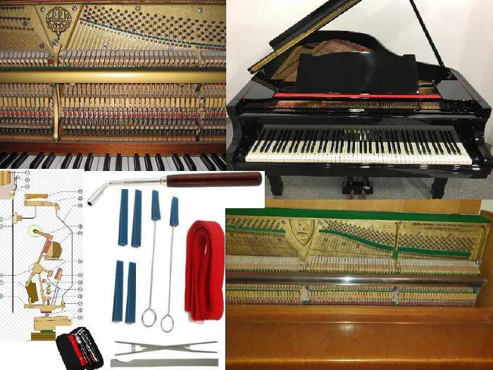 Strojenie Pianin Fortepianów Naprawa Regulacja Mechaniki klawiatury Jędrzejów Kielce Kraków